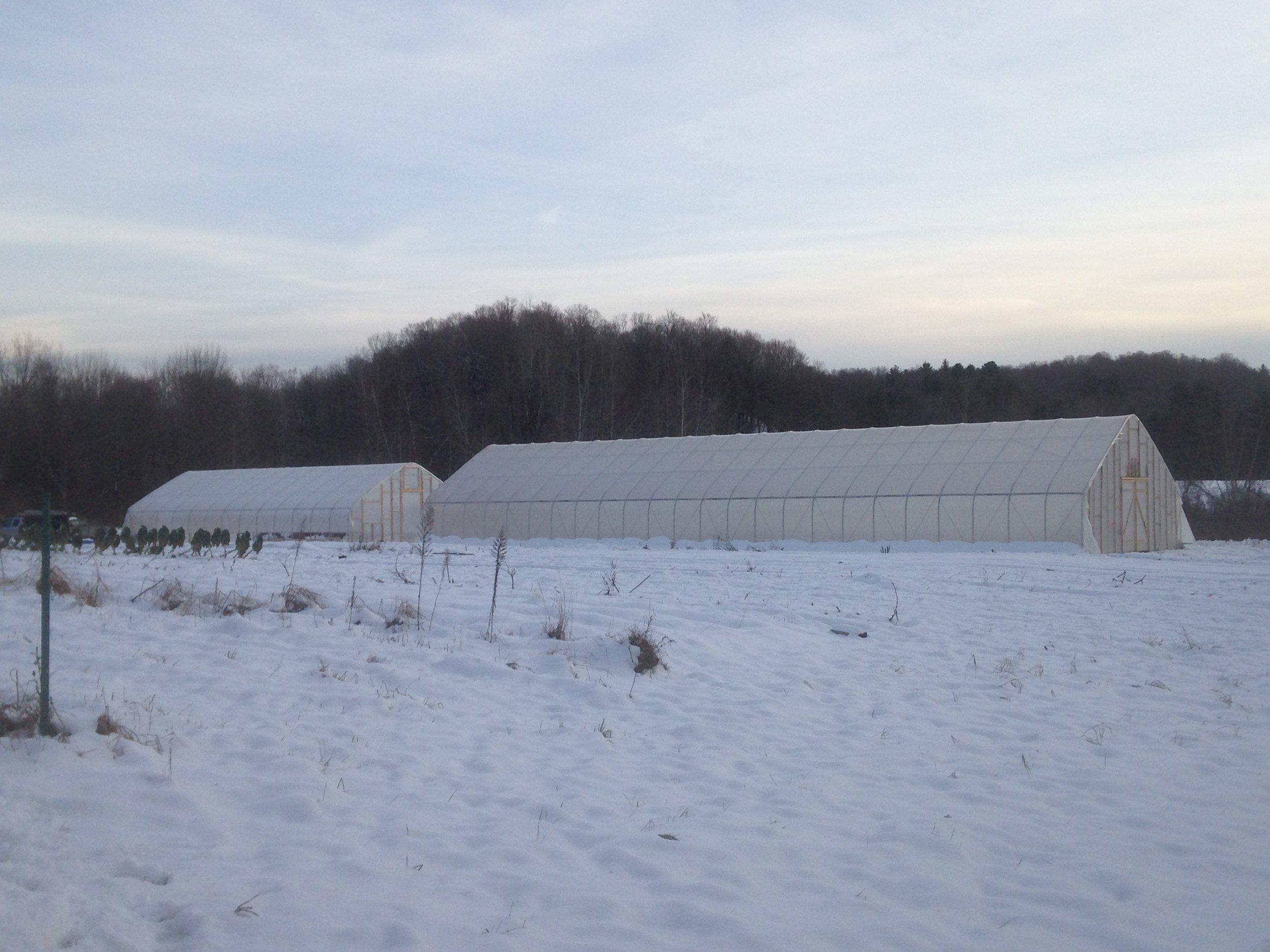 Footprint Farm Winter View