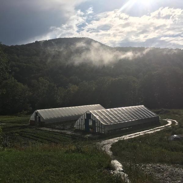 Long Winter Farm
