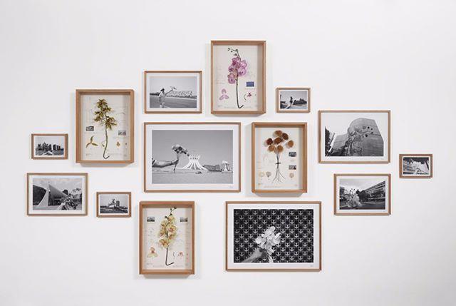 #Inspiration #rencontresarles #CollectifPeriscope  La Vuelta, une exposition de 28 photographes et artistes colombiens.  Entre autres, une interrogation sur l'objectivité d'un naturaliste botanique, une recherche sur la représentation historique de la nature, une parodie de l'exploitation coloniale. C'est le travail d'Alberto Baraya, Herbarium of Artificial Plants, 2002-2016.