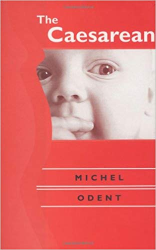 The Caesarean Hardback By michel odent