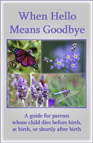 When hello means goodbye Paperback by Paul Kirk & Pat Schwiebert