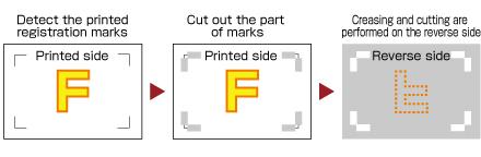 Vinyl Cutter Cutting Plotter Software Graphtec Pro Studio Reverse Side Cutting.jpg