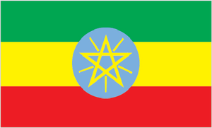 Anuak of Ethiopia   PILPG assisted the Anuak Justice Council in filing a complaint with the International Criminal Court regarding crimes against humanity allegedly committed by the Ethiopian government. PILPG also advised the Anuak in negotiations with the Government of Ethiopia over their right to water.