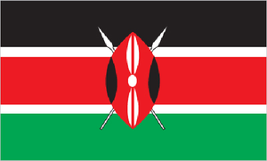 Kenya   PILPG provided legal assistance to the Government of Kenya in its efforts to promote effective governance and national reconciliation. PILPG established a program office in Nairobi to support its work in Kenya.  PILPG provided legal analysis and research assistance to the UN-supported Kenya Piracy Court.