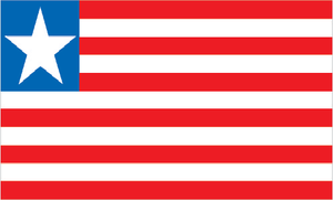 Liberia   PILPG provided legal assistance to the Government of Liberia and the Liberian Supreme Court on issues of constitutional reform.