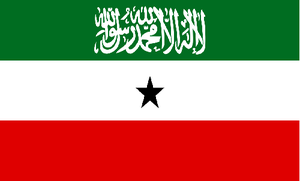Somaliland   PILPG advised the Somaliland government on a variety of legal issues pertaining to constitutional reform and legislative enactments. PILPG established a program office in Hargeisa to support its work in Somaliland.
