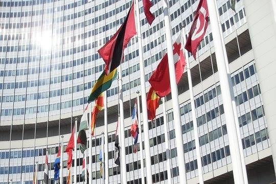 international tribunals -