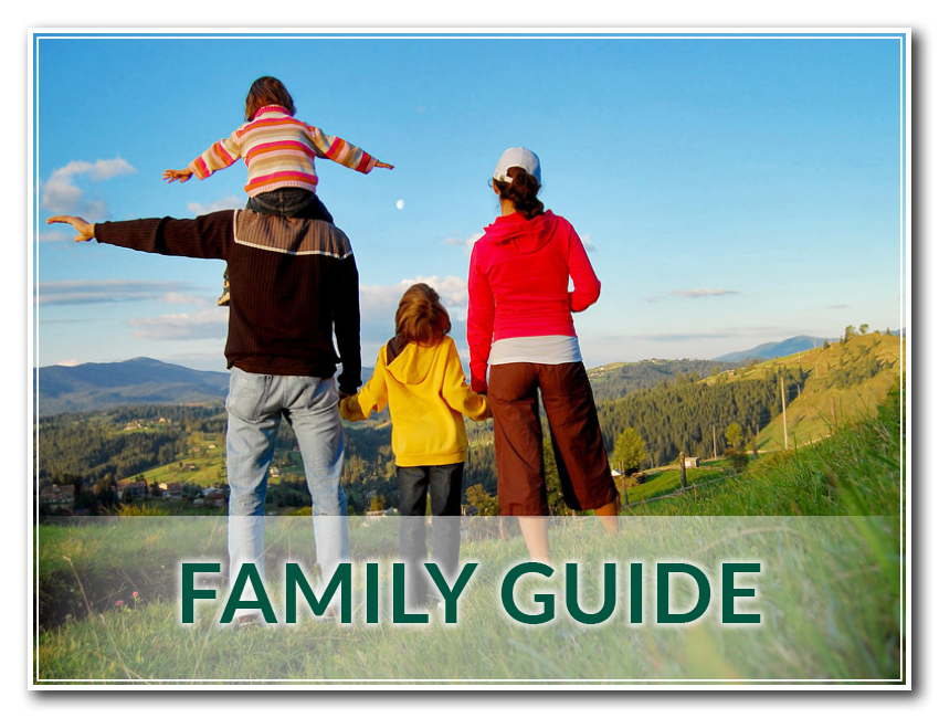 The Exclusive Robinson Family Guide