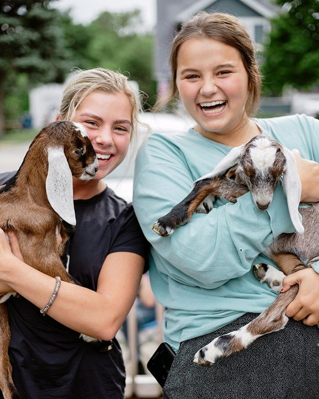 Dead. 🥰 Goat Yoga happened today and it won't be the last time! Thank you to @perrysburgyoga and Frisky Friends Farms 🐐