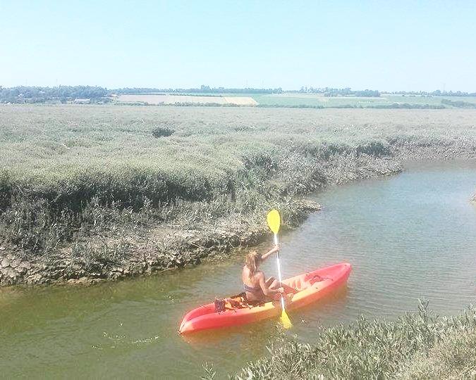 kayak - à partir de 15€