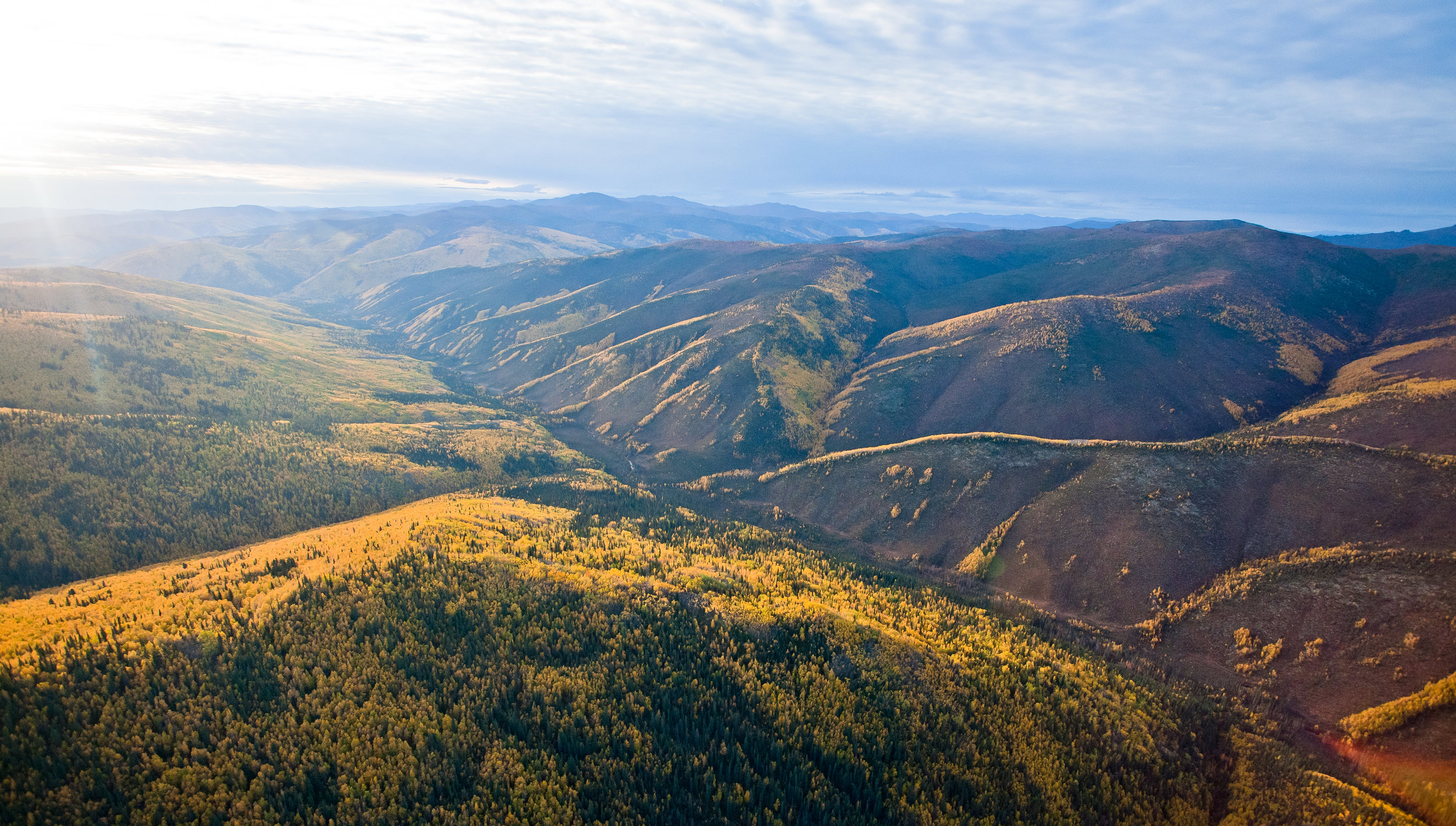 The proposed site of the Coffee Gold mine project glimmers under the Yukon sun. Photo by Jesse Kirkby