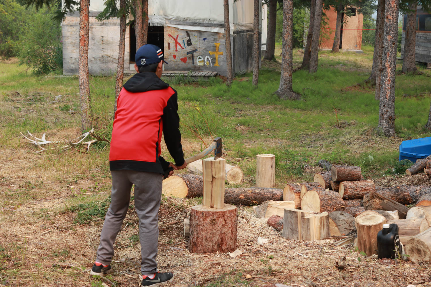 chopping wood-Meral.jpg