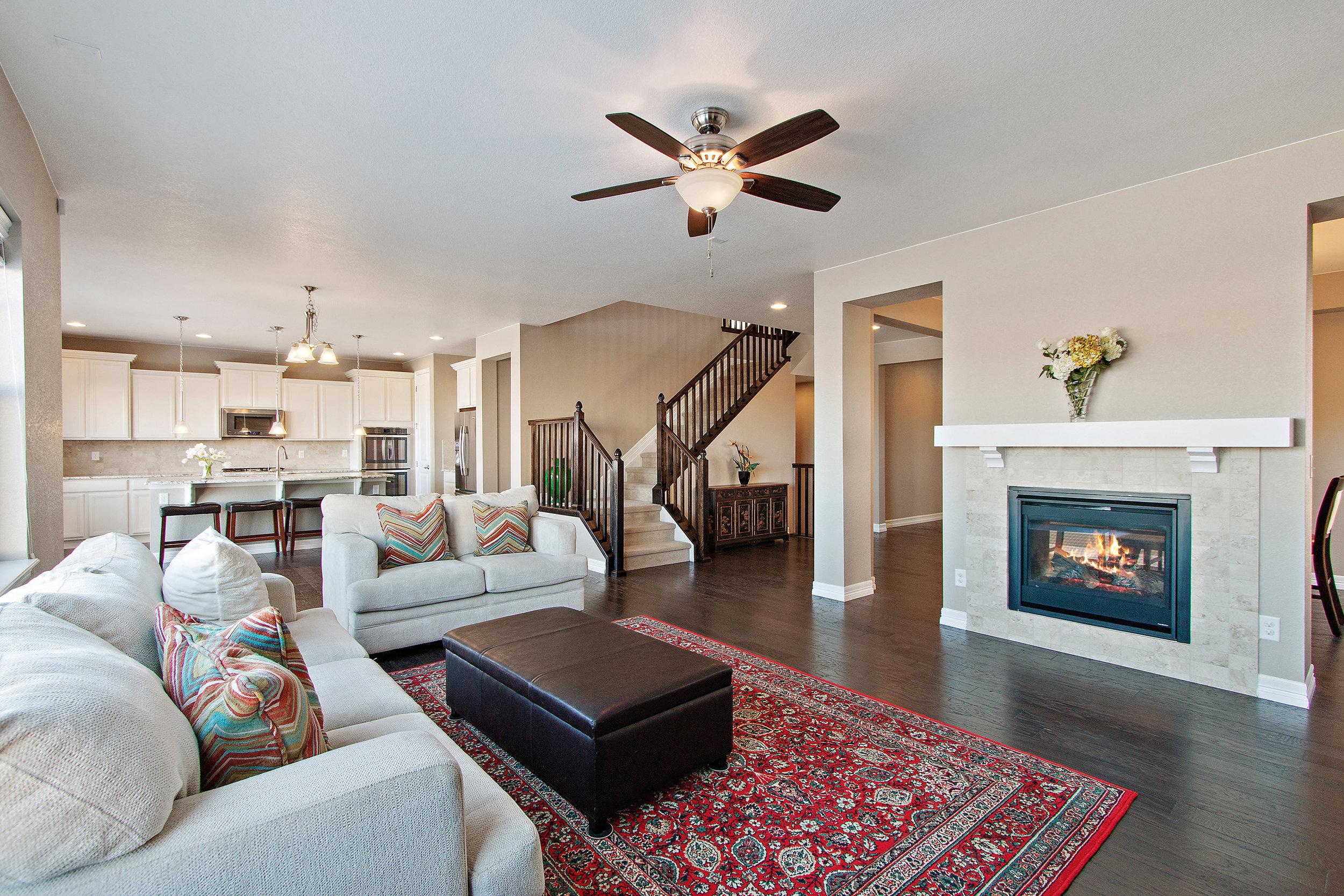 4 Living Room View.jpg