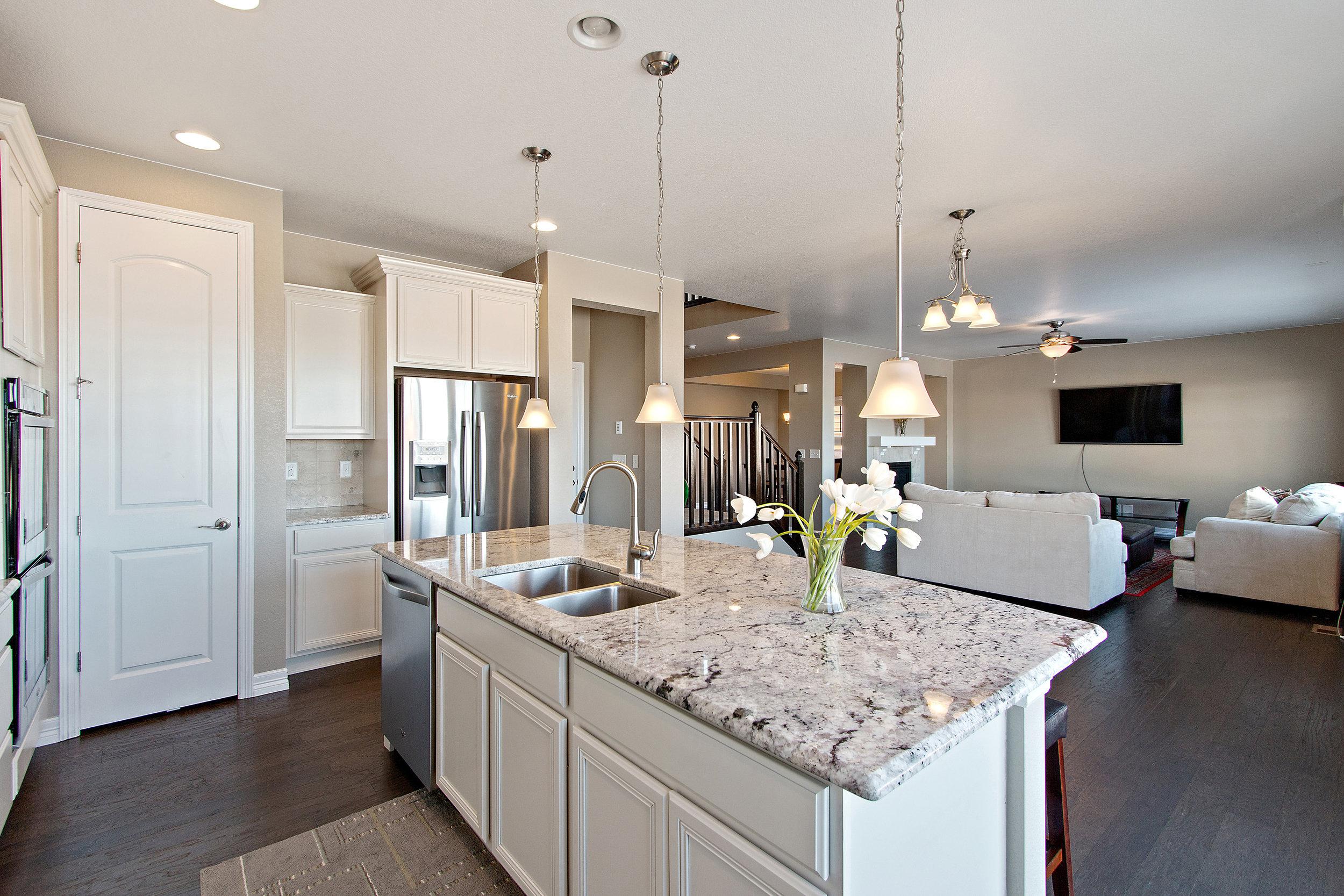 10 Kitchen View.jpg