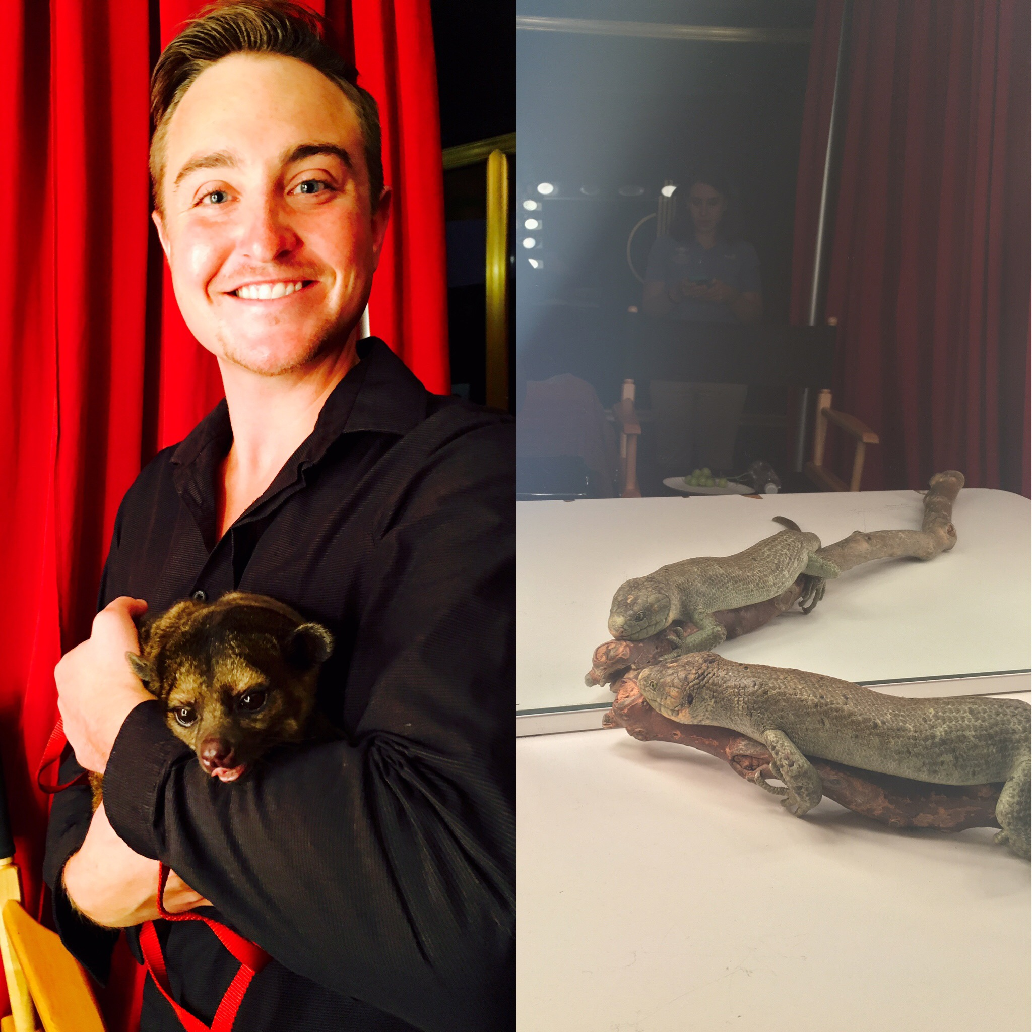 Getting acquainted with the animals in the green room before heading up to Studio 1A.