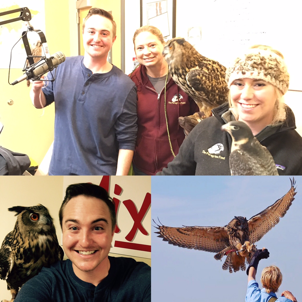 Mix 106 Radio with The Peregrine Fund and The World Center for Birds of Prey.