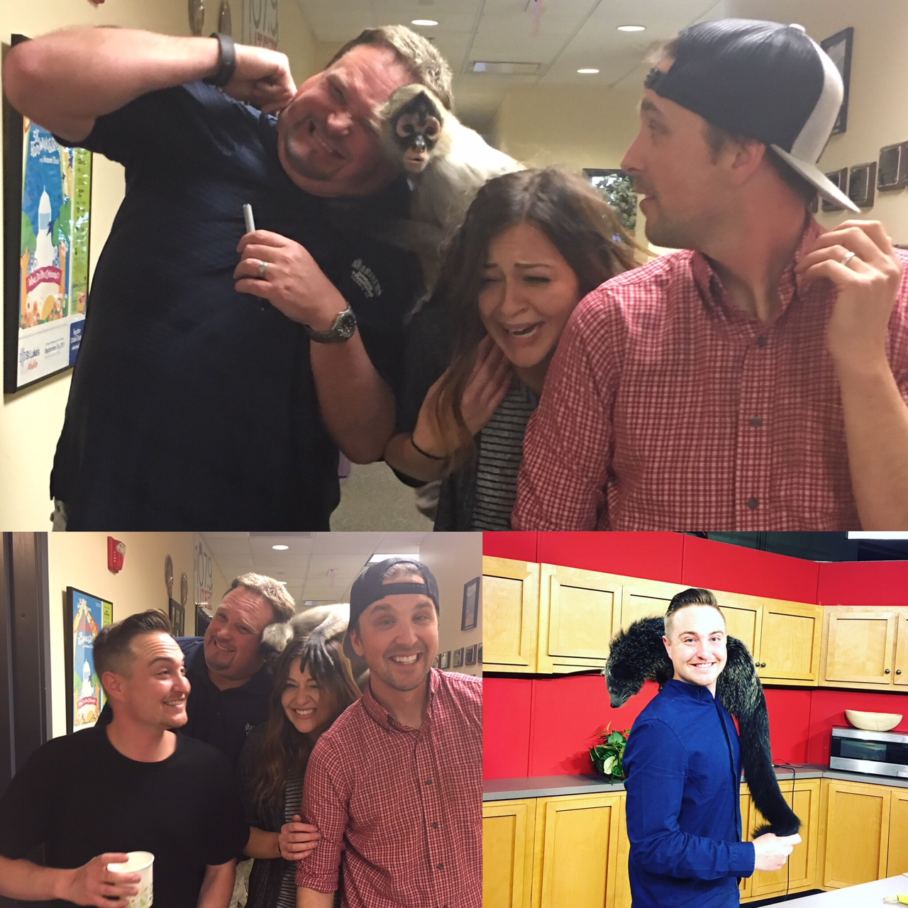 Top/Bottom Left: Mowgli the Spider Monkey from Babby Farms clinging to Mike Kasper, My sister Micah, and Producer JD at MIx 106 Radio. Bottom Right: Hanging out with a Binturong in the KTVB kitchen set.