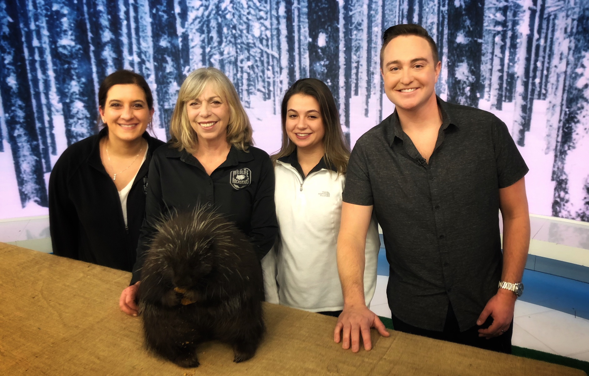 The amazing team at Wildlife Rockstars behind-the-scenes on set after the segment.