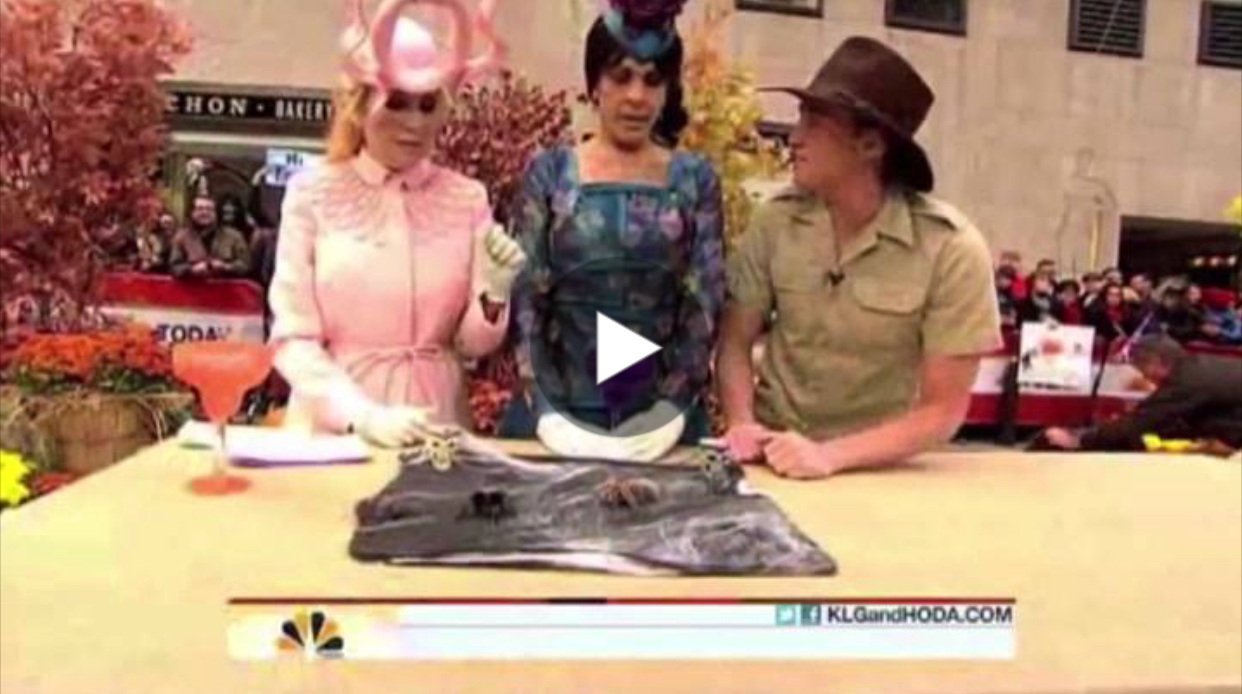 Halloween on The Today Show in 2011.