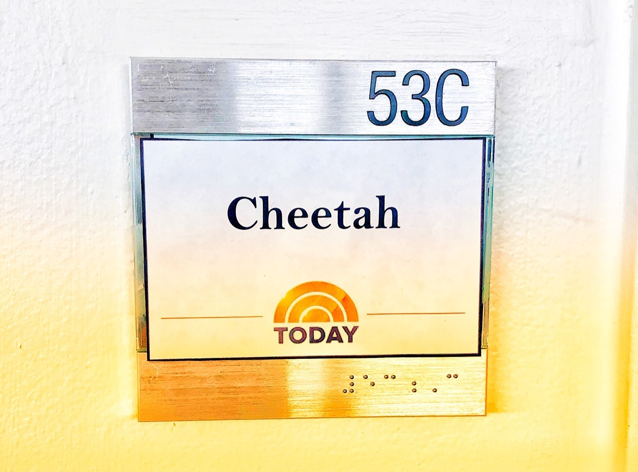 Nandi was a VIP at The Today Show, having her own dressing room!