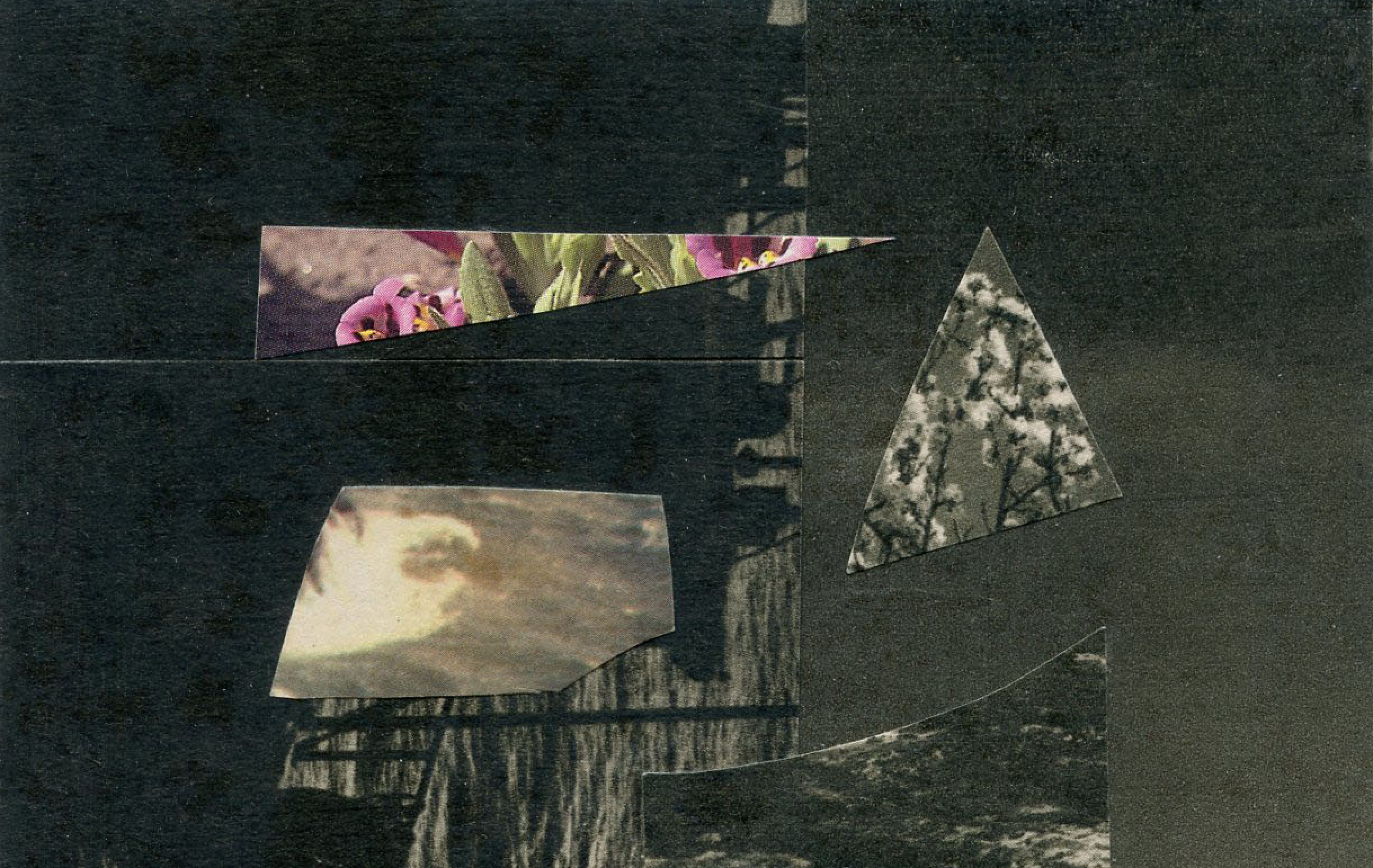 collage-jeader-2.png