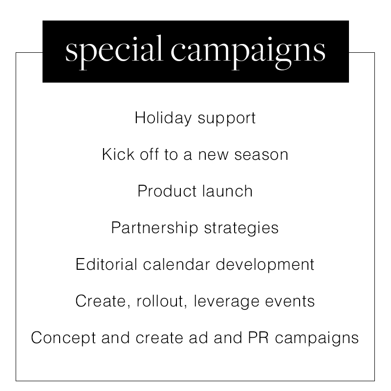 WhatWeDo_0002_special-campaigns.png