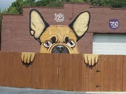 dog mural.jpg