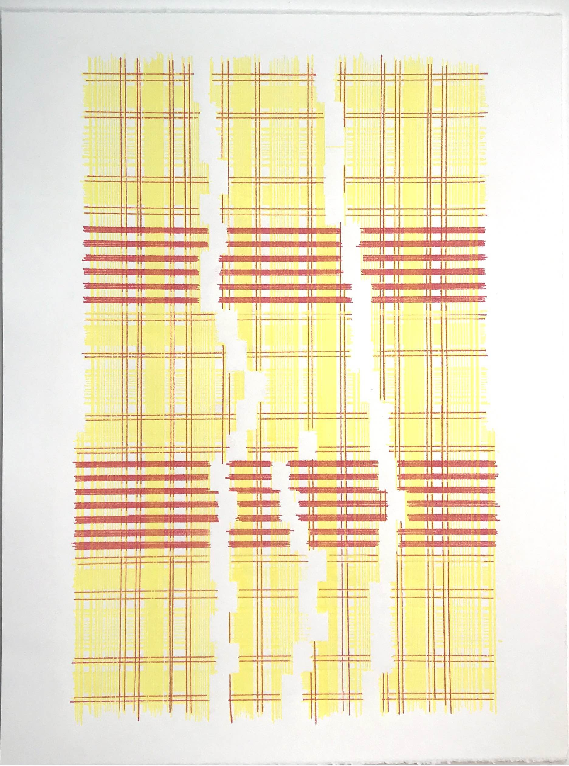 Yearning For New Physics (Plaid),  2018 Transfer pigment on paper 23x17.5 in (framed)