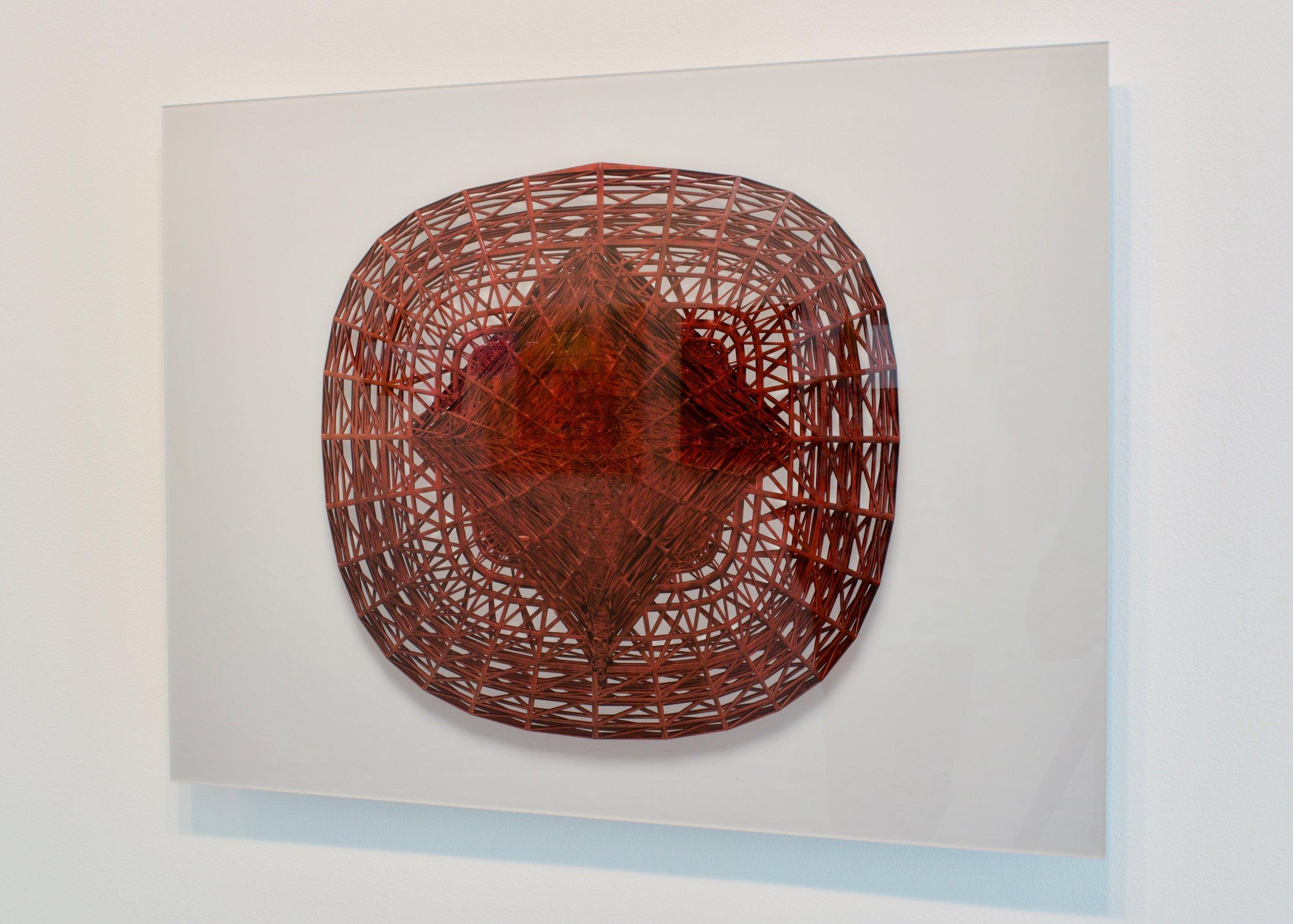 Leonardo's Signature Basket, 2019.  Inkjet print mounted on dibond, 19.5 x 26 inches