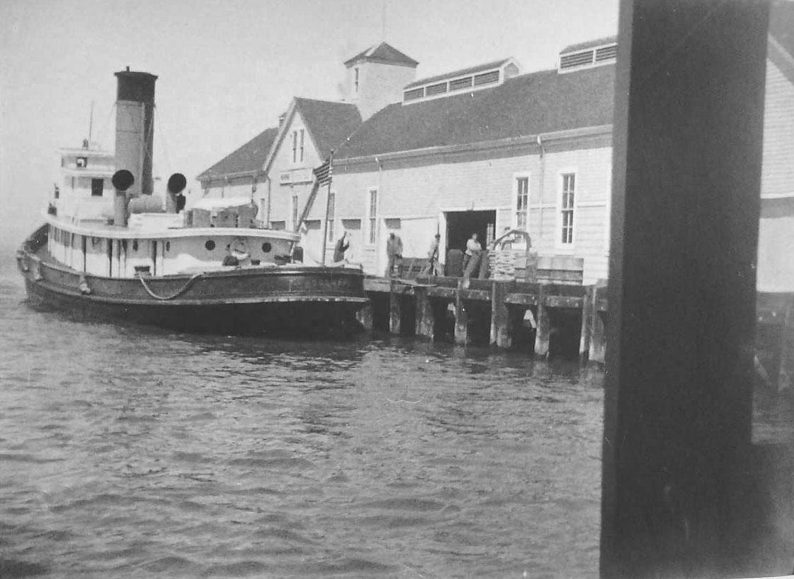 Tug Boat in New Zealand