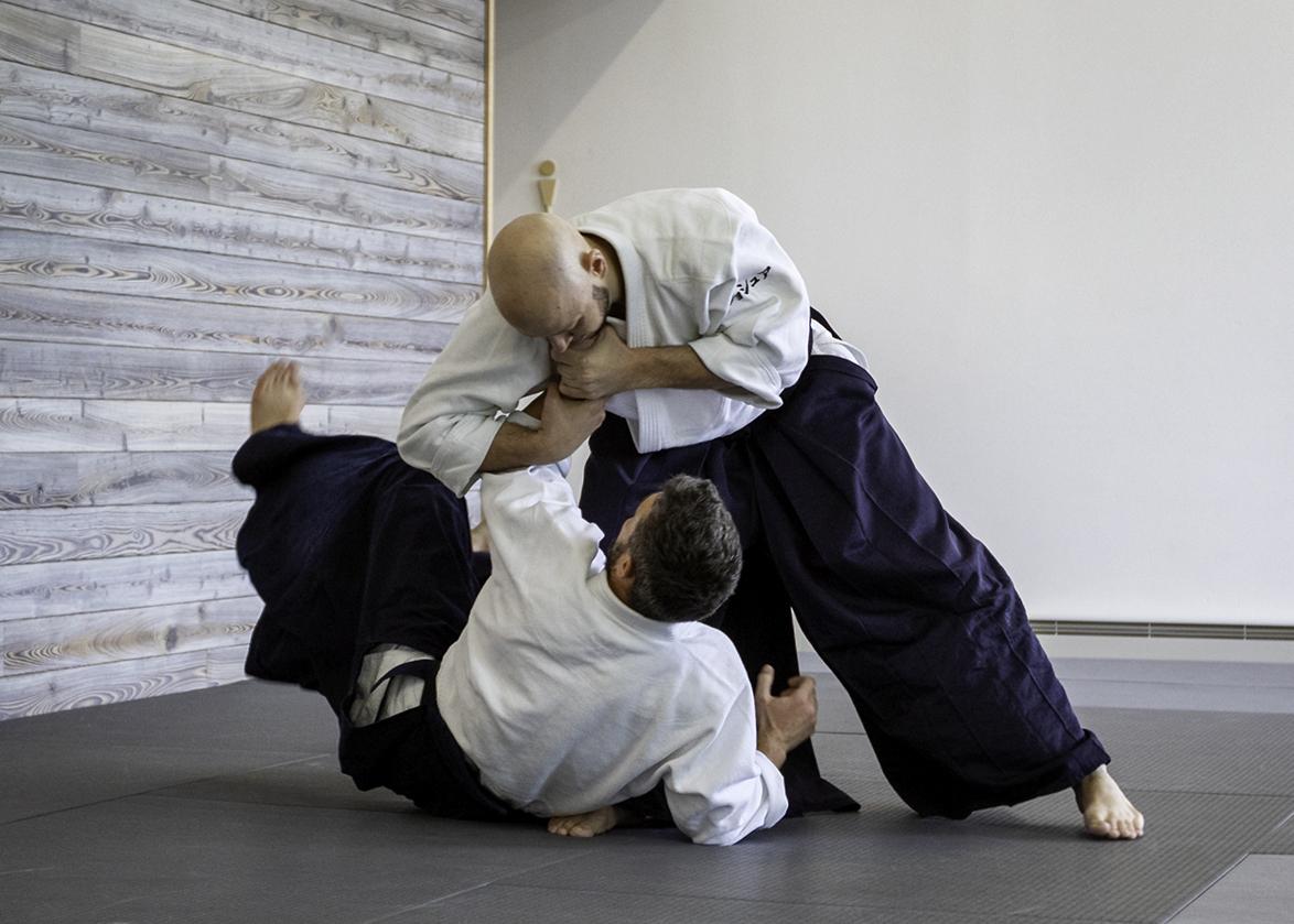 Joshua Layton Sensei - Roaring Fork Aikikai Second Anniversary Seminar, June 22-23, 2019