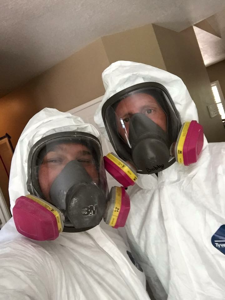 Mold cleanup