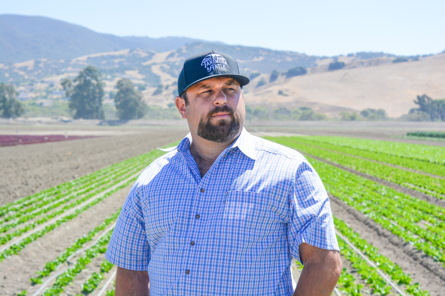 Farmer Feature - Scott Rossi of Tanimura & Antle
