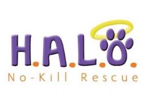 H.A.L.O. Animal Shelter