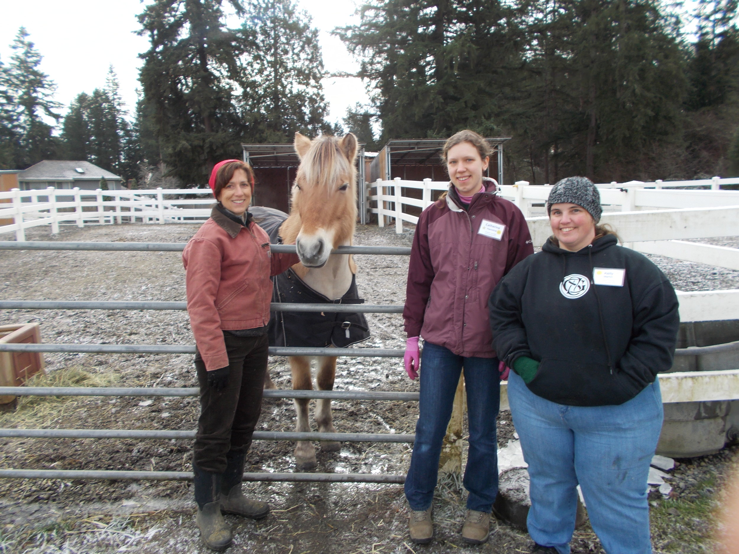 Three volunteers standing next to a tan horse.
