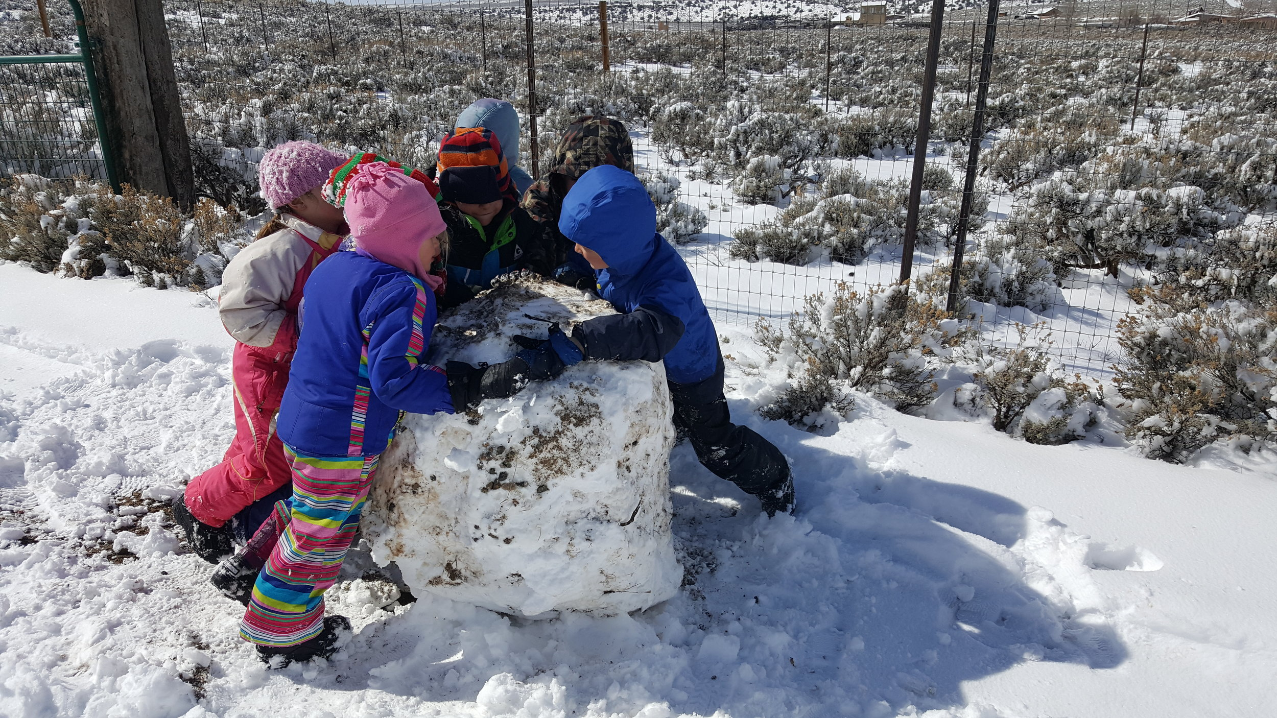 The kids had so much fun (and learning) making this giant snowball. Pushing, pulling, working together, on the sled, off the sled, in the sage, out of the sage. They stuck with it for nearly half an hour, a true education in the making. So proud of these kids.