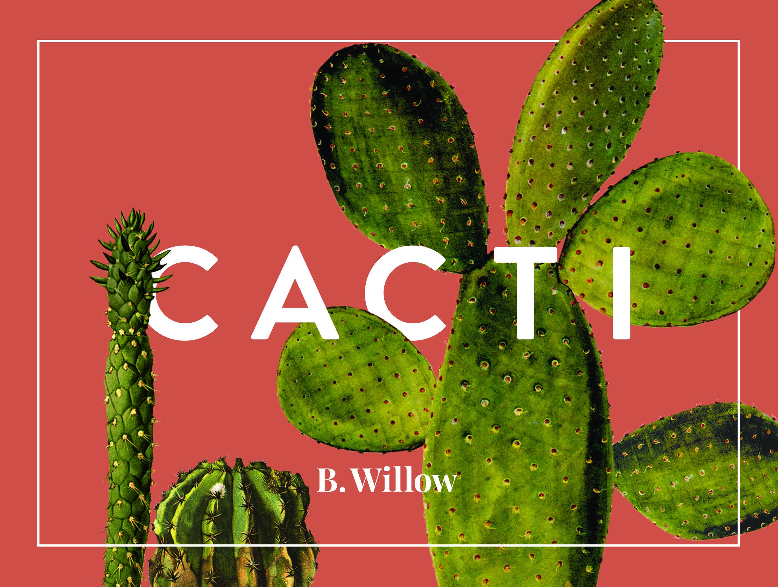 Cacti-Front.jpg