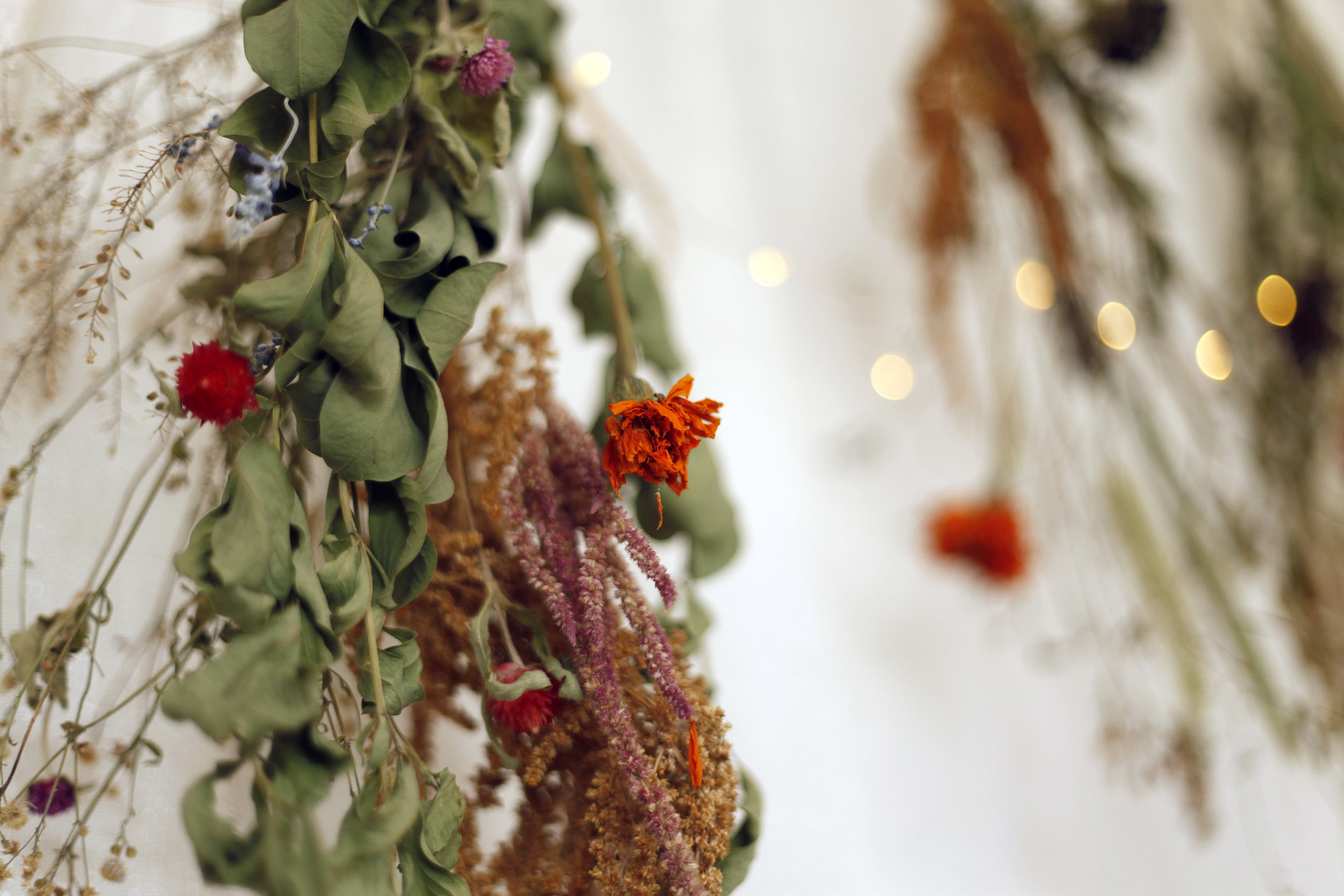Hanging Dried Floral Backdrop
