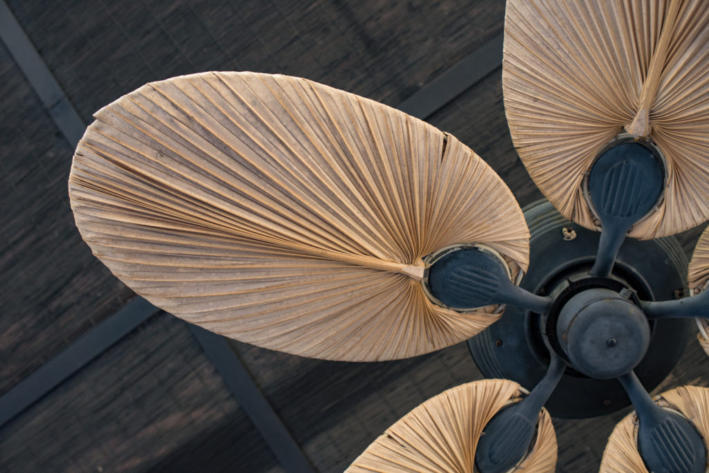 6-tips-to-beat-the-heat-ceiling-fan-1024x684.jpeg