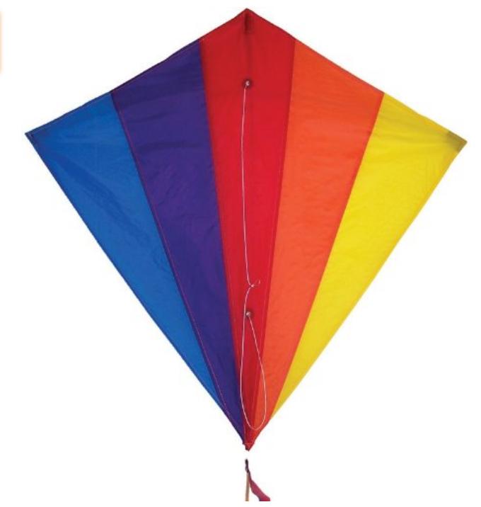 A Rainbow Kite. $15.59