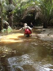 Blog2_P1_Nick_Jungle_Gold_Season_1_West_Africa_Discovery_CH_Jungle_Swamp_2_medium.jpg