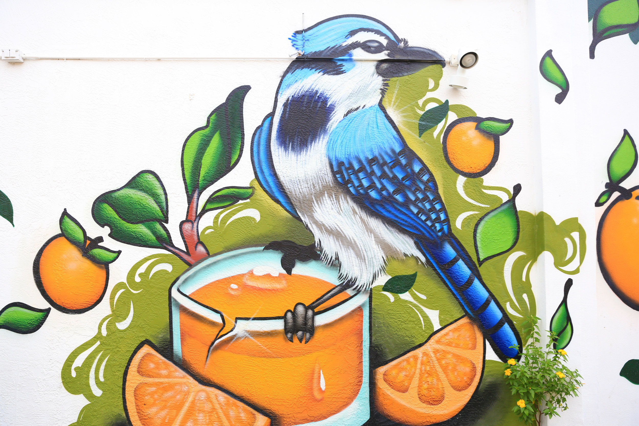 Backwater_Mural_Melbourne.jpg