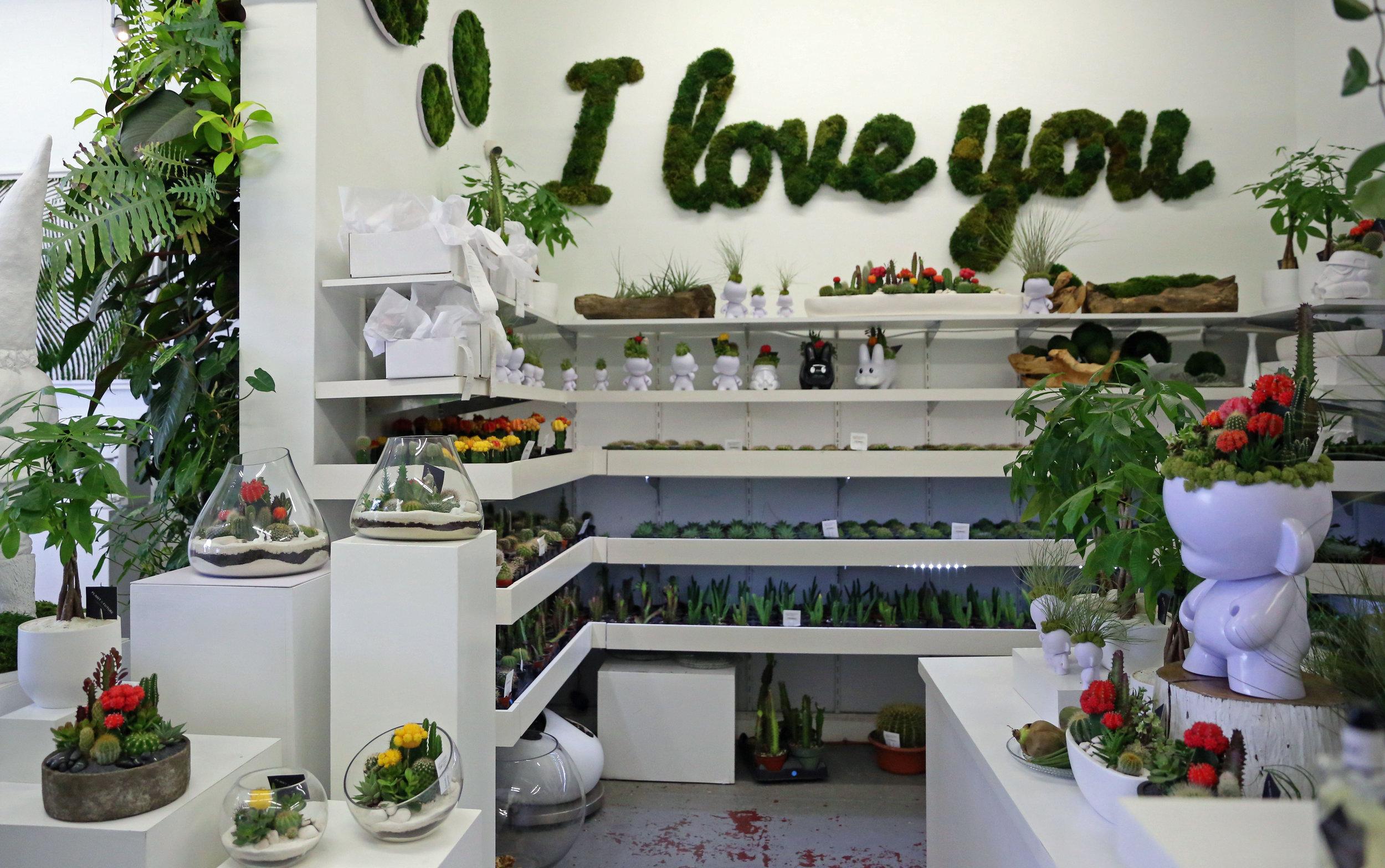 PlantTheFuture_Miami_Wynwood.jpg