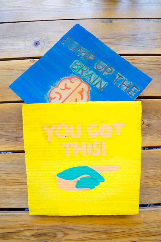 DIY Affirmations, You Got This, DIY Sign, Recycled Craft, Recycled Pizza Box, Recycled Egg Carton, Pump Up The Brain