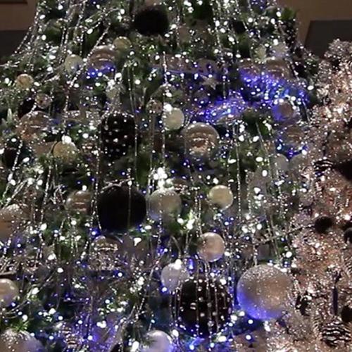 macy's-christmas-tree-100mm-flexiflex-rental-equipment-rgb-lighting-10twelve.JPG