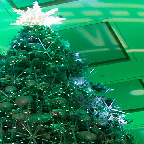 macy's-christmas-tree-full-motion-videp-horitculture-philips-color-kinetics-rgb-lighting-10twelve.JPG