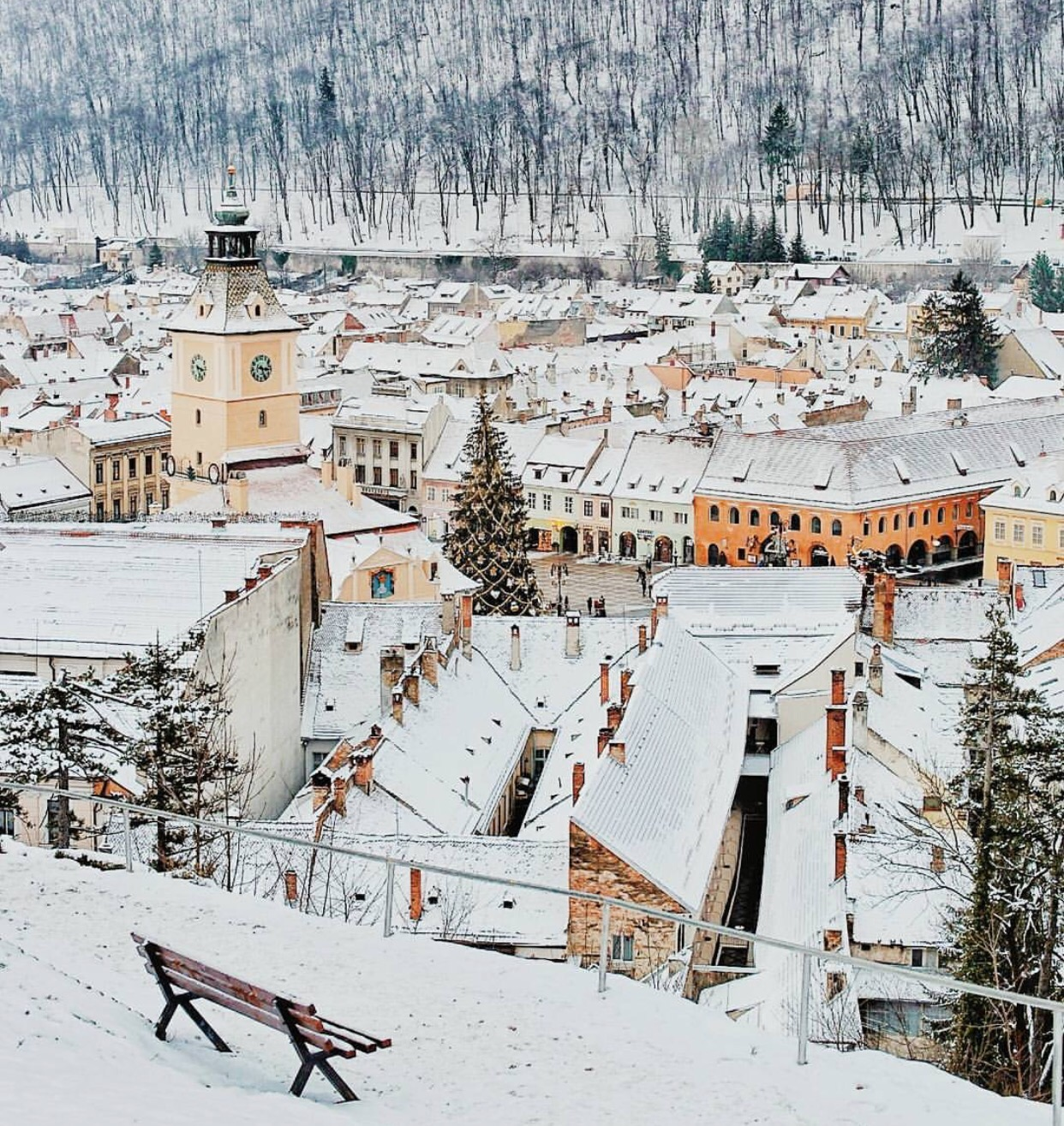 Imagine yourself here on this bench in Brasov. Sipping hot chocolate, listening to the snow fall...