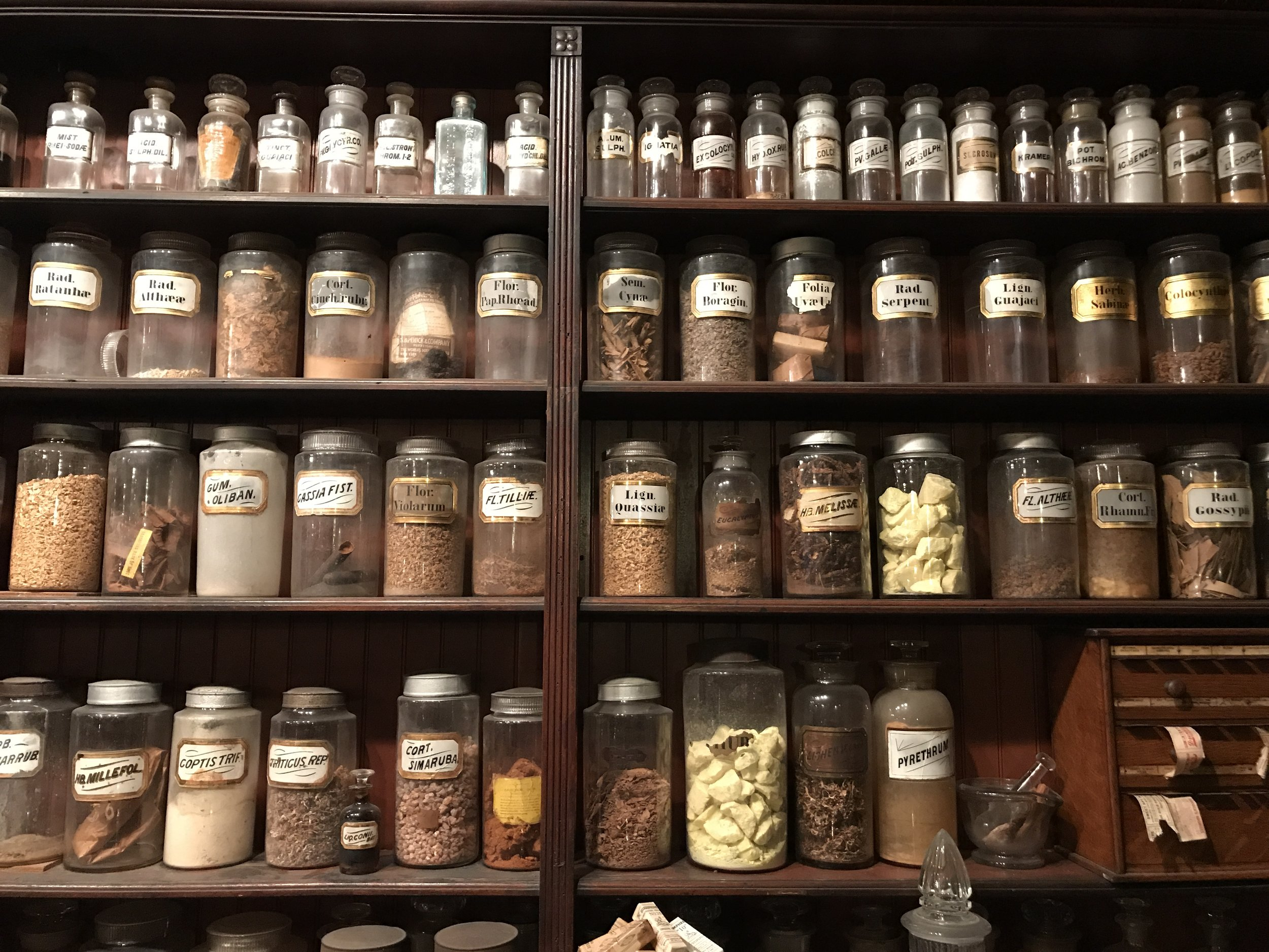 Take a tour of the Pharmacy Museum and be thankful for modern medicine. Though it kind of feels like we have not advanced as much as we should have.  Photo courtesy of Hope .