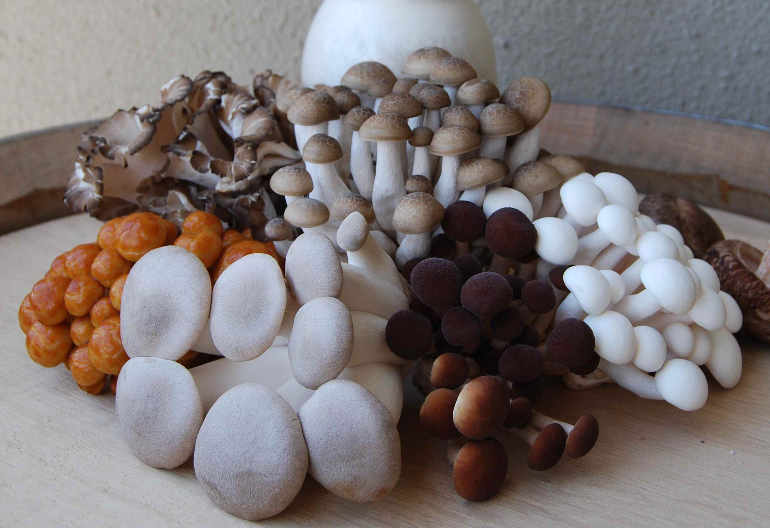 Gourmet-Mushroom-Group.jpg