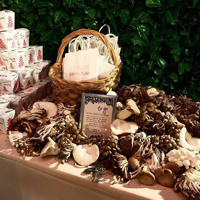 Now we're talking! Our mushrooms were used as wedding centerpieces by florist @sachiandmaja then taken home as wedding favors at the #mushroomwedding! (And also served at dinner of course.) 🍄#weddingfavors #weddingfood #mushrooms #mycopiamushrooms #weddinginspiration #mushroom